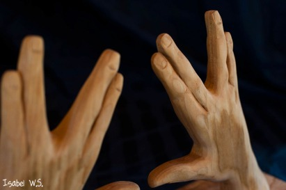 close-up of Kohen hands woodcarving , three dimensional, basswood