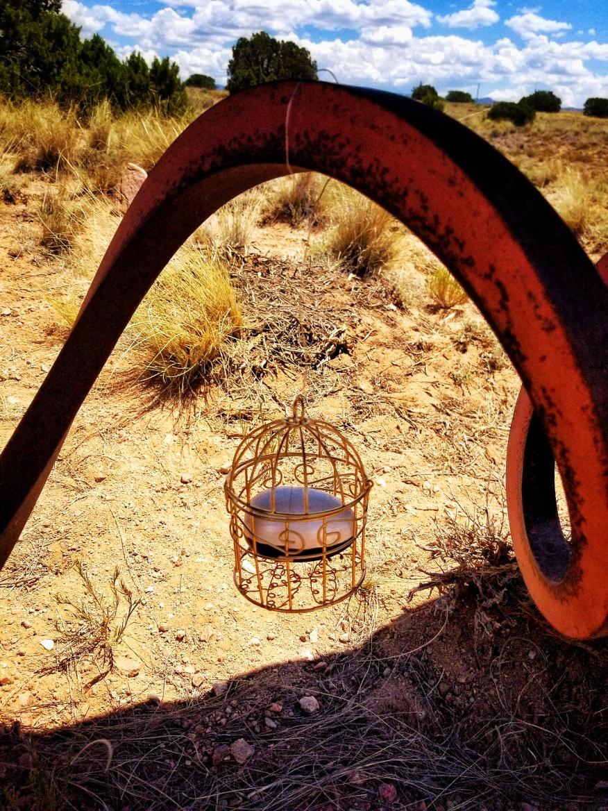 """Golden Cages,"" Santa Fe Walking Trail, NM, 2017."