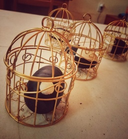 """Golden Cages,"" Santa Fe Walking Trail, NM, 2017."