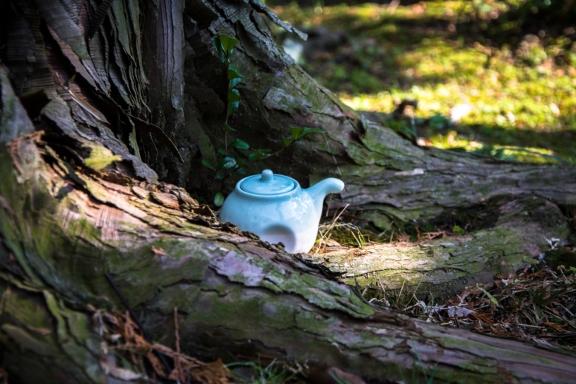 teapots (3 of 11)