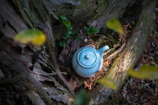teapots (4 of 11)
