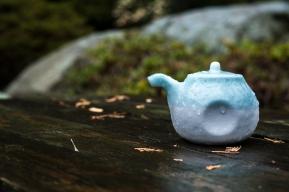 teapots (9 of 11)