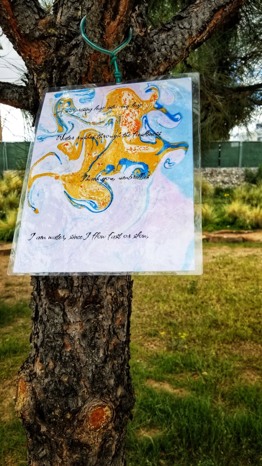 Text on a piece of laminated marbled paper, hung in a tree